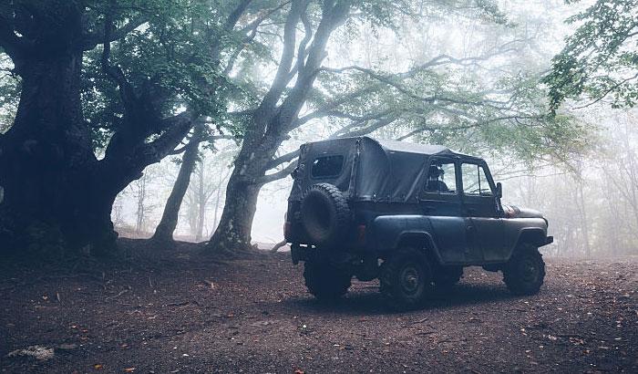 jeep jk fog light bulbs